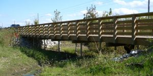 Trail & Pedestrian Bridges